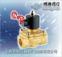 SMQ潛水電磁閥 SLDF
