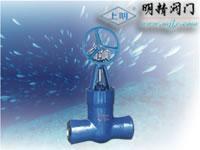 阿壩大九寨岷江旅游漂流Z560Y傘齒輪焊接閘閥/上海閥門廠021-63800050  Q347H