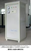 電池大電流放電設備規格