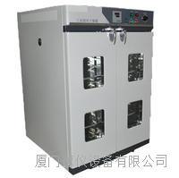 电热恒温鼓风干燥箱