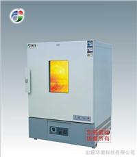 高溫恒溫箱 CS101