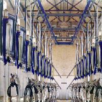 玉牛牌铡草机奶牛挤奶设备