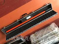 语言高压验电器 ZC2/10KV
