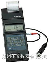 便携式测振仪 TV110