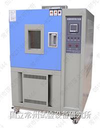 低温恒定湿热箱 DHS-010