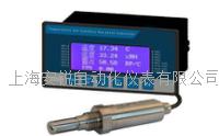 固定式漏點檢測儀 DP200