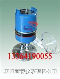 美國DE508-45-901 射頻導納物(液)位計