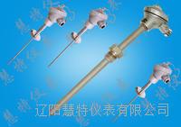 温度传感器,铠装热电偶 PT-100 WDC-PT100