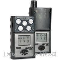 ISC英思科便携式多气体检测仪MX6 MX6
