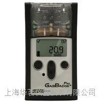ISC英思科测氧仪GB Pro GB Pro