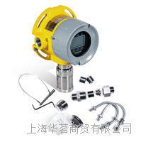 固定氧气监测仪 RAEGuard 3