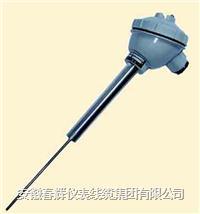 直形管接頭式一體化熱電偶/熱電阻 WRNB-72 WZPB-72