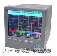 SWP-NSR 液晶無紙記錄儀 SWP-NSR