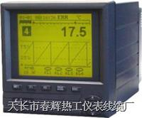 SWP-NSR 液晶無紙記錄儀 SWP
