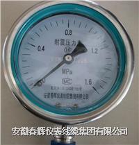 不銹鋼耐震壓力表 YBFN-100  YBFN-150