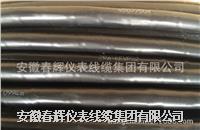 氟塑料絕緣聚氯乙烯護套耐高溫控制電纜 ZR-KFVP4-2.5