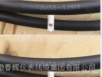 GYXTZW33-12B1、GYXTZW33-6A1B光缆 GYXTZW33-12B1  GYXTZW33-6A1B