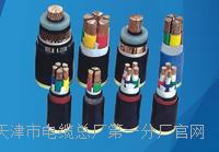 NH-KFFP电缆结构 NH-KFFP电缆结构