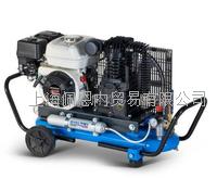 高壓進口壓縮機 EOLO330/SH