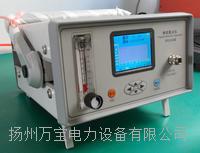 六氟化硫精密露点仪 WBGSM-3000B