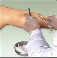上等外科縫合下肢模型  GD/LV2