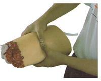 下肢外傷斷肢止血模型 KAH-H3008