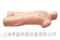KAH/CK813腹部移動性濁音叩診與腹腔穿刺訓練模型 KAH/CK813