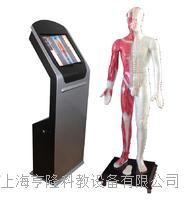 55寸多媒體人體針灸穴交互數字平台 ZKWAT-55M