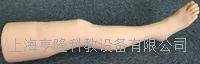 針灸腿部訓練模型 ZK/100011F