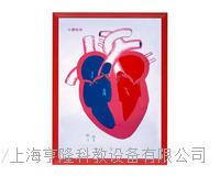 心髒解剖(示血液流向)浮雕模型 KAH2079-14