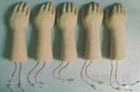 靜脈輸液手成套仿真模型2 KAH/H3310