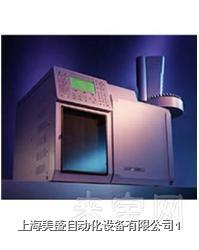 美國瓦里安CP-3800/3900 GC氣相色譜 CP-3800/3900 GC