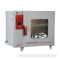 电热恒温培养箱 CS-BPX-272