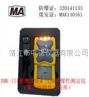安铂便携式煤矿气体可爆性测定仪BMK-III BMK-III