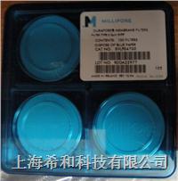 DVPP02500聚偏二氟乙烯,0.65um,孔徑,25mm直徑