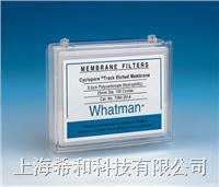Whatman Cyclopore聚碳酸酯膜和聚酯膜 7060-4704