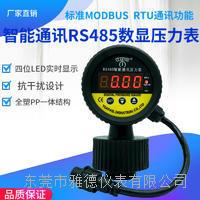 PP隔膜式智能數字壓力表RS485 YDS1-M19/26-001