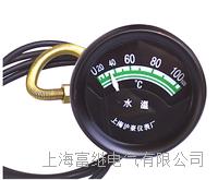 TSW102水溫表 TSW102