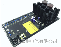 DECS-100-A15發電機數字電壓調節器 DECS-100-B11