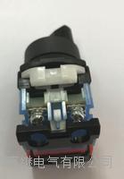 AR22WR-311B旋鈕開關 AR22WR-311B