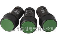 按鈕 CP1-13G-10