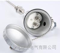 溫度傳感器 WZP-230