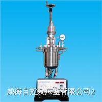 油加熱反應釜 WHF