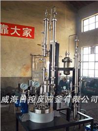 聚合反應釜 WHF