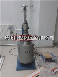 5L高溫高壓反應釜