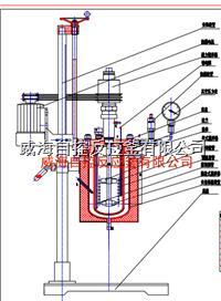 5L实验反应釜 WHFS-5L