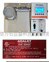 美国硫化氢分析仪优势 H2S-725