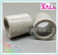 Lihua-陶瓷拉西環填料宣傳冊