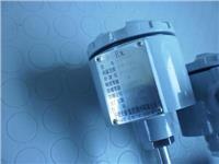 防爆热电阻 双支防爆热电阻WZP2-440PT100