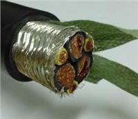电力电缆,变频电缆 ZR-BPVVP2P0.6/1KV3*70+3*16